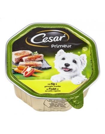 César Primeur...
