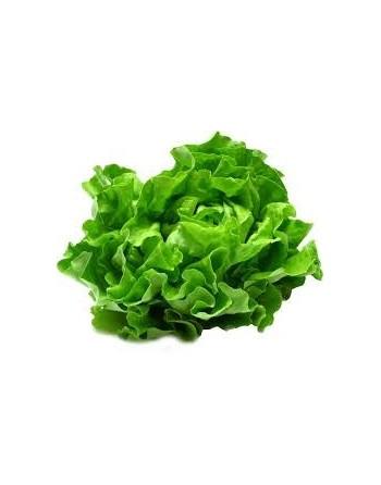 Salade 1KG